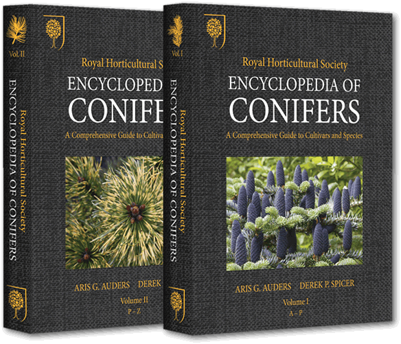 conifer encyclopedia