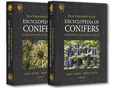 Encyclopedia of Conifers A Comprehensive Guide to Cultivars and Species